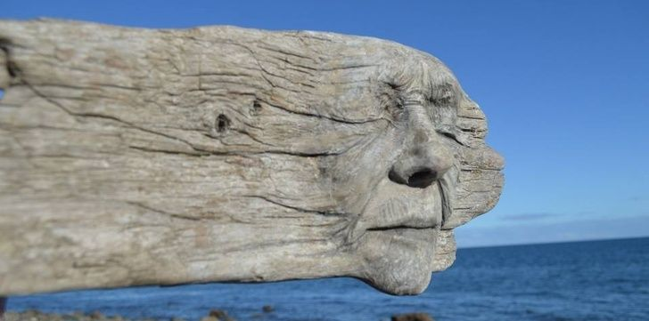 Driftwood Magnets-Dont Marry for Money/…