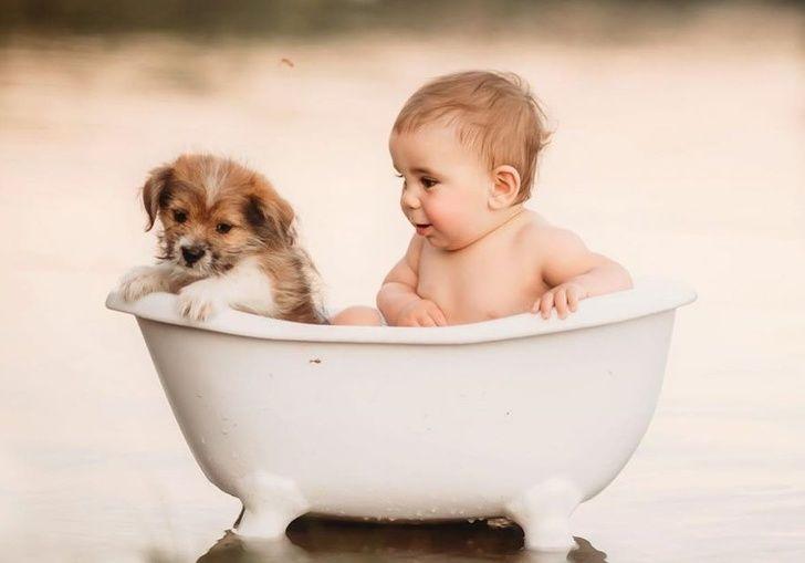Bir Fotoğrafçı Hayvanlarla Sarılmış Çocukları Yakalar ve Gördüğümüz En Saf Şey